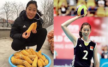 人物志:排球女将朱婷——从富士康到奥运MVP
